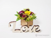 Decoratiune Love S
